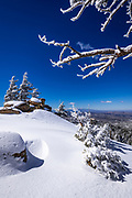 Snow flurries and rime ice on pines above Lake Arrowhead in the San Bernardino Mountains, San Bernardino National Forest, California USA