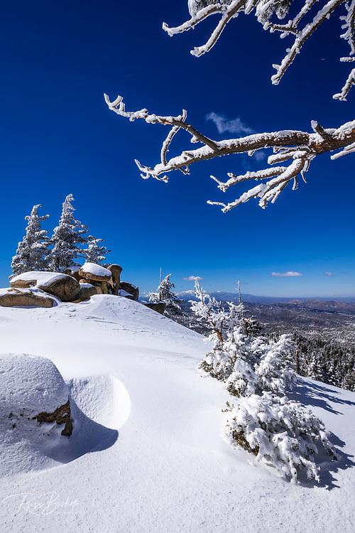 Snow flurries and rime ice on pines above Lake Arrowhead in the San Bernardino Mountains, San Bernardino National Forest, California USA