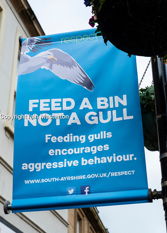 Sign in central Ayr asking public not to feed seagulls because of aggressive behaviour. UK