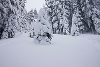 Storm at Kirkwood ski resort near Lake Tahoe, CA.