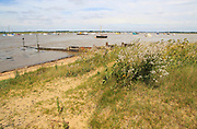 The mouth of the River Deben, Bawdsey Quay, Suffolk, England