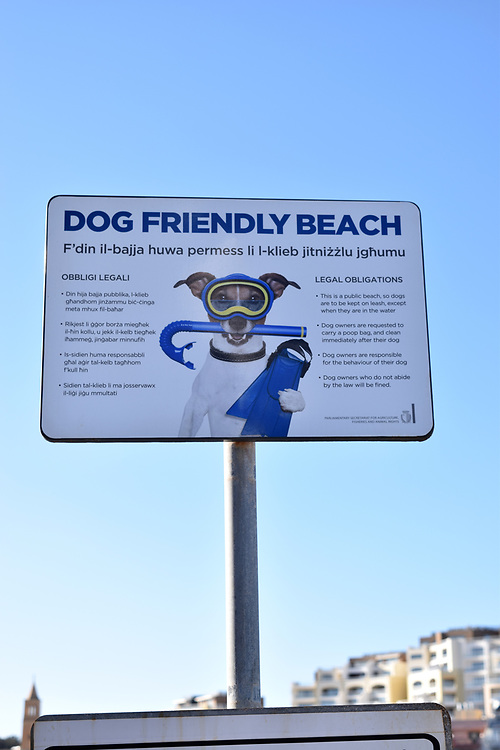 Dog friendly beach sign