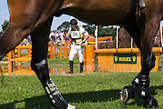 Sam Griffiths - Real Dancer<br /> World Equestrian Festival, CHIO Aachen 2012<br /> © DigiShots