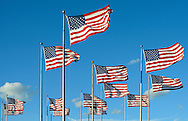 13th Flags of USA.