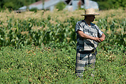 An inmate from the Smith County Jail tends a garden in Tyler, Texas on July 12, 2013. The garden is nearly 5 acres and has produced more than 150,000 pounds of fresh produce for needy East Texans since 2010. (Cooper Neill / for The Texas Tribune)