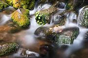 Headwaters of the Sacramento River.  Mt Shasta, California