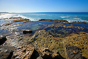 Tidepool, Ulehawa Beach Park, Nanakuli, Leeward Coast, Oahu, Hawaii