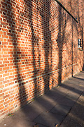 The shadows of bare bough trees on the brick wall of a south London Catholic church.