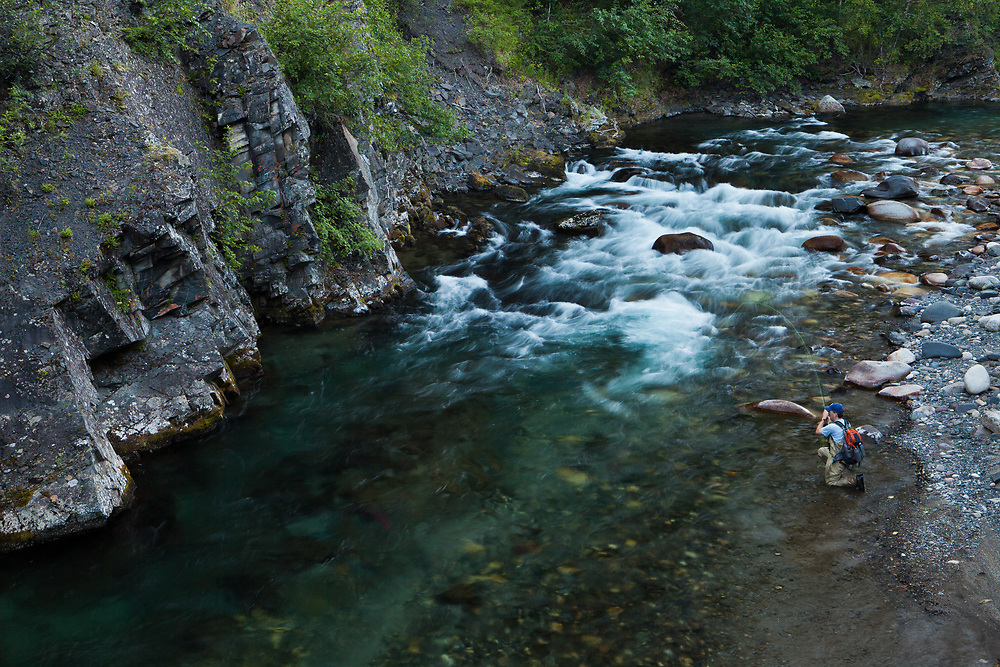 Angler George Rogers fly fishing for wild rainbow trout, Indian River, Alaska