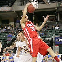 Forward Zach Biggs (33) grabs the rebound over Viking forward Alex Cybularz (20)
