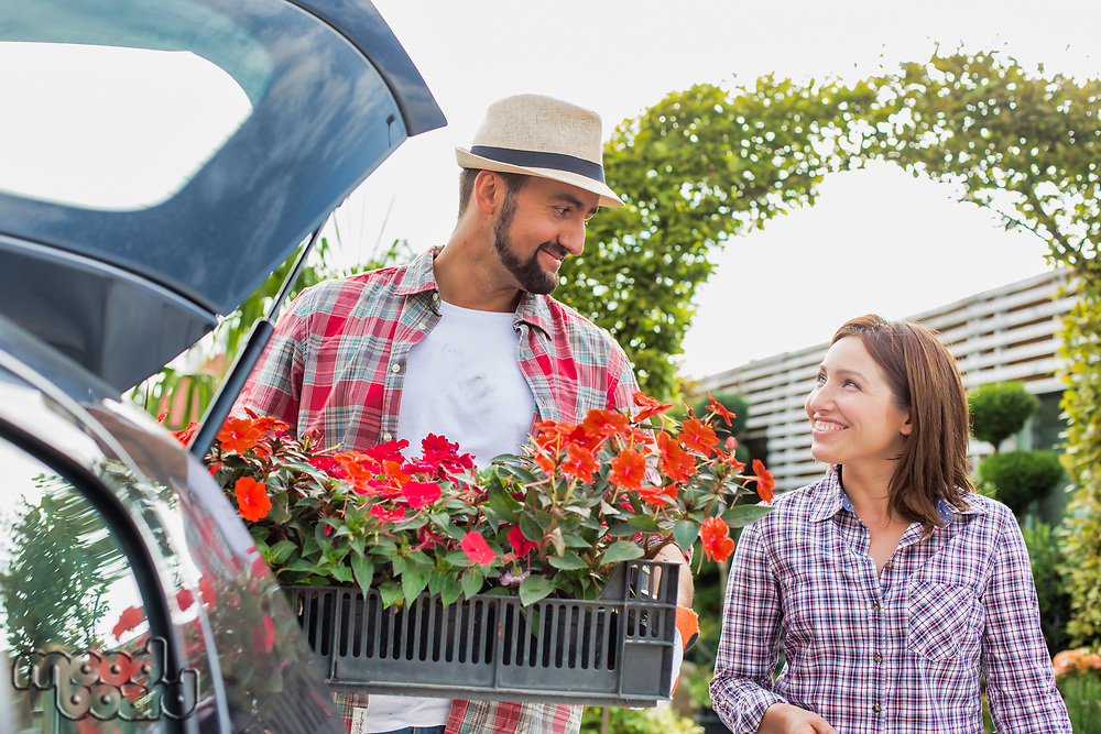 Portrait of mature gardener putting flowers on crate in car trunk while talking to woman in garden shop