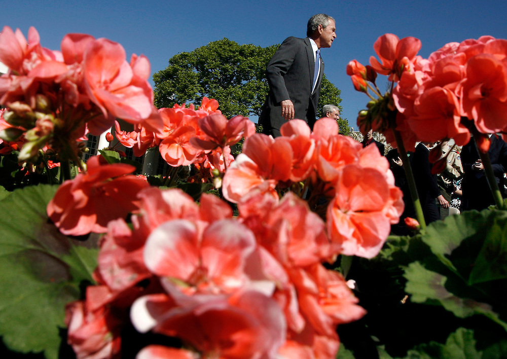 U.S. President George W. Bush arrives to make remarks to the recipients of the President's Environmental Youth Awards in the Rose Garden at the White House in Washington, April 17, 2008.  Reuters/Jim Young