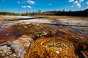 Black Sand Geyser Basin at Yellowstone National Park, WY, on Sept. 2, 2012.  (Photo by Aaron Schmidt)