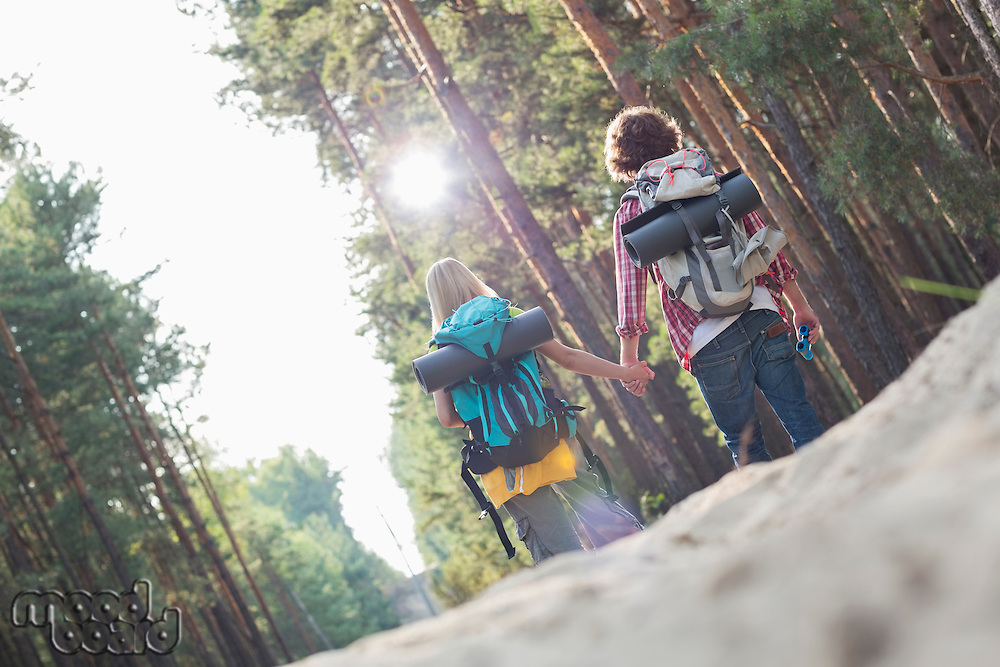Rear view of hiking couple holding hands while walking in forest