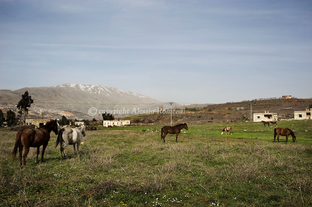 Israel - Golan. Landscape of Majdal al-Shams..© ALESSIO ROMENZI
