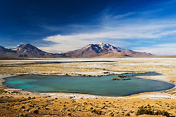 "Thermal pool at edge of salt lake ""Salar de Surire"", in the Andes in northeastern Chile near the Bolivian border, natural monument, home to 3 species of flamingos, Chile, South America"