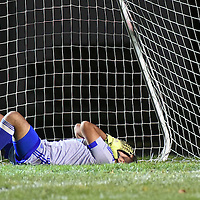Laura Stoecker/lstoecker@dailyherald.com<br /> Larkin goalie Eleno Montes reflects on a rough first half with Elgin scoring three goals over the Royals Tuesday.