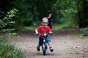 Nederland, Austerlitz, 27-08-2017<br /> In Austerlitz rijdt een driejarige peuter met zijn loopfiets door het bos.<br /> <br /> In Austerlitz a three year old child ride on his walking bike in the woods.<br /> Foto: Bas de Meijer / Hollandse Hoogte