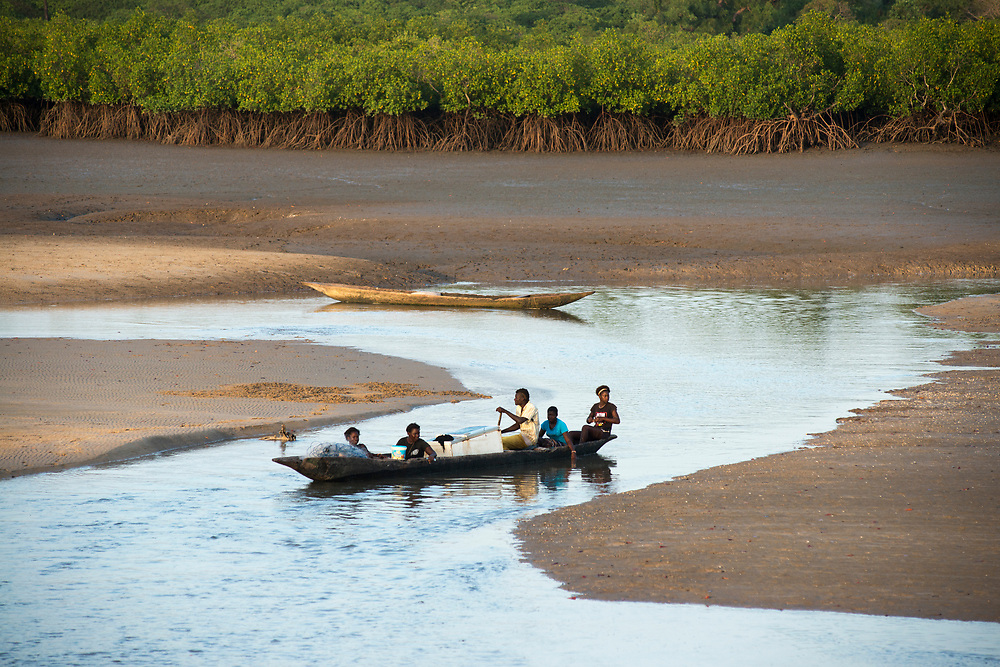 A family navigates along tidal channels through the mangroves in a traditional wooden pirogue. The coastal mangroves of Guinea Bissau and southern Senegal are some of the most important in Africa. Rising sea levels and drought due to global warming and climate change are causing the salinization of the complex mangrove ecosystem with adverse affects on the fauna and flora of the region. Mangroves harbor an extraordinary amount of bio mass and are exceptional carbon sinks. Their destrucion not only affects local populations, but also the worldwide fight against global warming and climate change. Canchungo, Guinea Bissau. 05/11/2014.