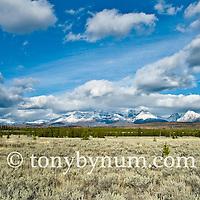big meadows livingston range fall colors glacier national park north fork valley