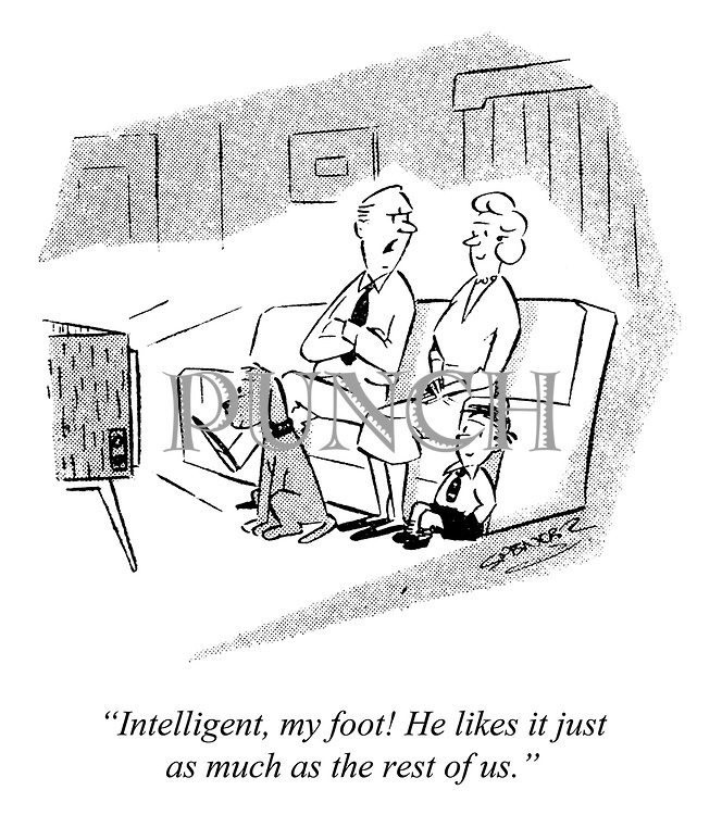 """Intelligent, my foot! He likes it just as much as the rest of us."""