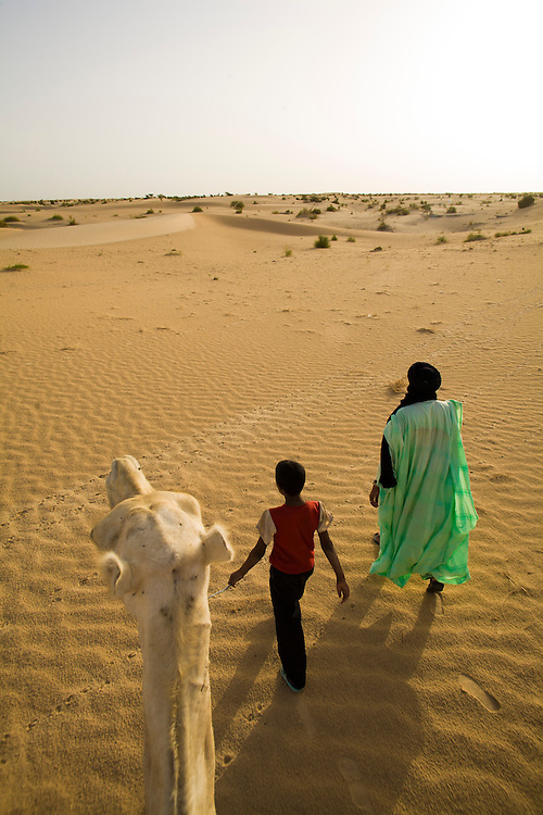 Man and boy with camels in the desert around Timbuktu, in Mali.