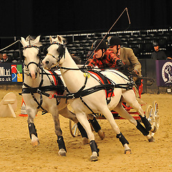 Horse of the Year Show | NEC Birmingham | 10 October 2013
