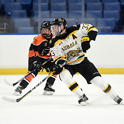 BUFFALO, NY - SEP 20,  2017: Ontario Junior Hockey League Governors Showcase game between the Orangeville Flyers and the Aurora Tigers, James Thomson #33 of the Aurora Tigers pursues the play during the third period.<br /> (Photo by Andy Corneau / OJHL Images)