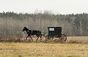 A horse and buggy travel along John Green Road in Penn Yan, NY, Monday, December 11, 2017. An increasing number of accidents have been occuring between motor vehicles and horse-and-buggies in the heavily Mennonite populated area of upstate New York. <br /> (Heather Ainsworth for The New York Times)
