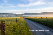 66745-04907 Hyatt Lane in fog Cades Cove Great Smoky Mountains National Park TN