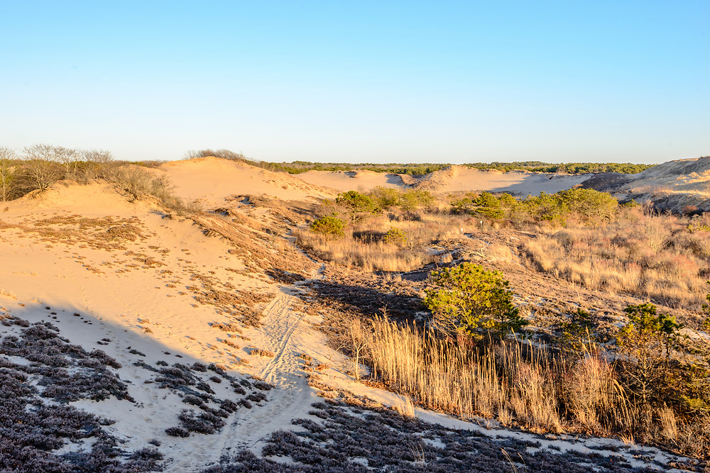 The Walking Dunes, Hither Hills State Park, Montauk, LI, NY