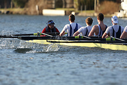 2012.02.25 Reading University Head 2012. The River Thames. Division 2. Bedford School Boat Club IM2 8+