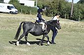 12 - Mounted Leid Rein