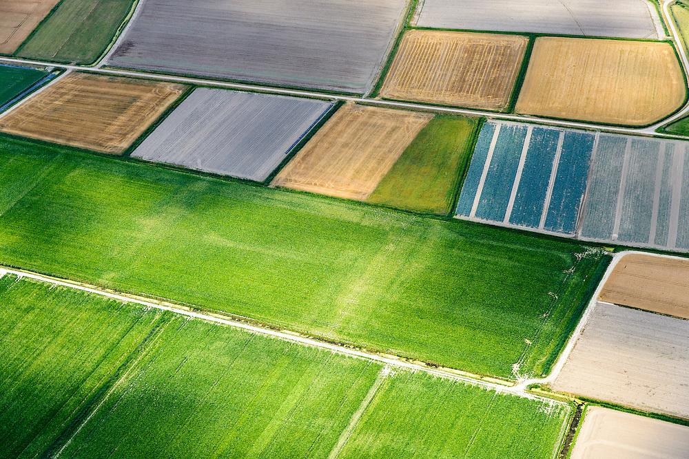 Nederland, Friesland, Gemeente Dongeradeel, 05-08-2014; landerijen en weilanden omgeving Wierum. Regelmatig verkaveling zeekleipolders, landaanwinning van de nabijgelegen Waddenzee<br /> Farmlands and pastures surrounding Wierum. Regular pattern is the result of  the land reclamation of the nearby Wadden Sea<br /> luchtfoto (toeslag); aerial photo (additional fee required); foto Siebe Swart / photo Siebe Swart