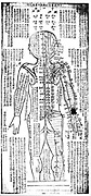 Acupuncture chart for rear of the body. 19th century Japanese. Wood block