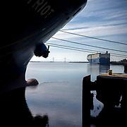 The Wallenius Wilhelmsen ROROs Patriot and Grand Pioneer load and unload cargo at the Port of Brunswick Colonial's Island facility in Brunswick, Ga., Monday, Aug., 20, 2018. (GPA Photo/Stephen B. Morton)
