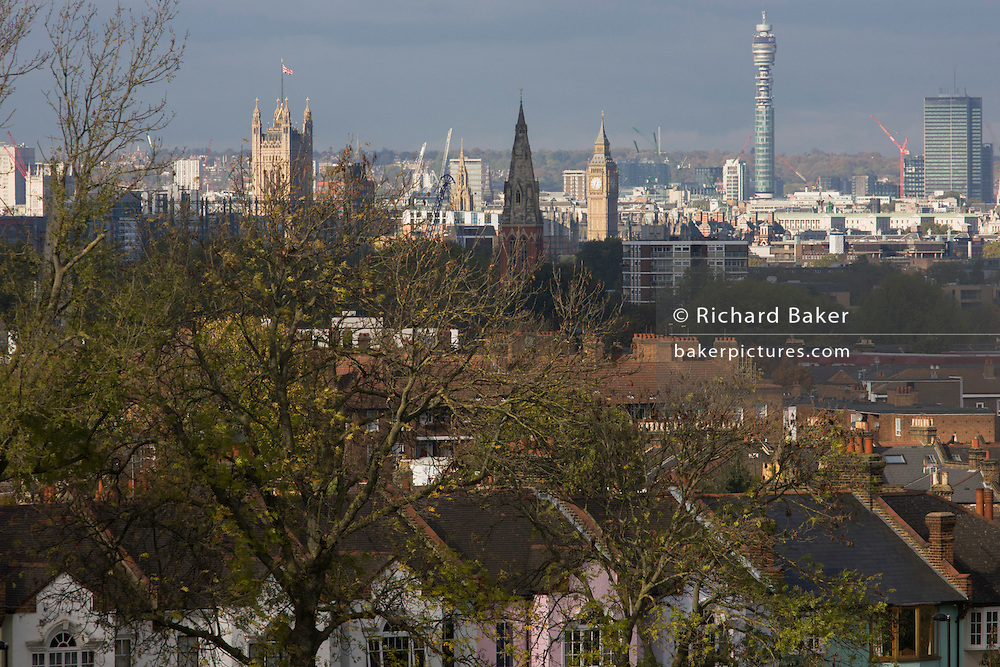 100 year-old ash trees seen overlooking south London towards Westminster and the Houses of Parliament.