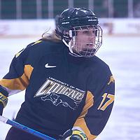 3rd year forward, Lilla Carpenter-Boesch (17) of the Regina Cougars during the Women's Hockey Away Game on Fri Jan 11 at University of Saskatoon. Credit: Arthur Ward/Arthur Images