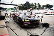 October 5-7, 2017: Motul Petit Le Mans 2017. 24 BMW Team RLL, John Edwards, Martin Tomczyk, Nicky Catsburg