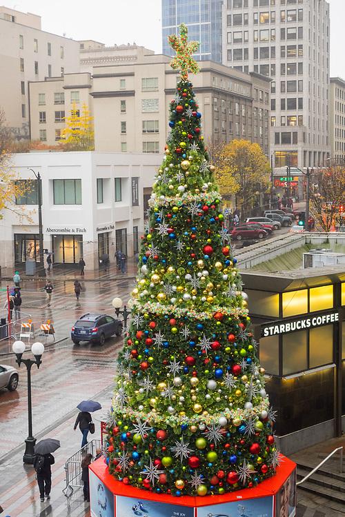 North America, United States, Washington,  Seattle, Christmas Tree in Westlake Park