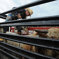 Rance Maddocks of Hecla adjusts a rope before bull riding during the 2013 PRCA Sioux Empire Fair Pro Rodeo on Saturday, August 10, 2013 at the Grandstand of W.H. Lyon Fairgrounds.  (Jay Pickthorn/Argus Leader)