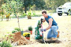 Man preparing a hole to plant a tree