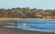 Walking on the beach at Alnmouth, St Oswald's Way / Northumberland Coast Path, Northumberland, UK