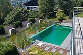 Natural Pool 917