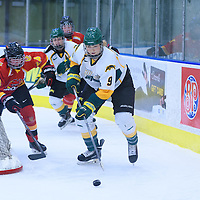 3rd year forward Emma Waldenberger (9) of the Regina Cougars in action during the Women's Hockey Home Game on November 26 at Co-operators arena. Credit: Arthur Ward/Arthur Images