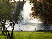 Water Fountain at the Lake Forest Keys Community in Lake Forest California
