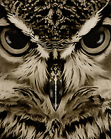 The gracefulness and power of this owl are well worth appreciating in greater detail. If you are someone with a fondness for animals, this depiction of an owl by Jan Keteleer can make for a lovely addition to a home, or even to a place of business. This is an image that reminds you of the splendid beauty and fury one finds in nature. –<br />