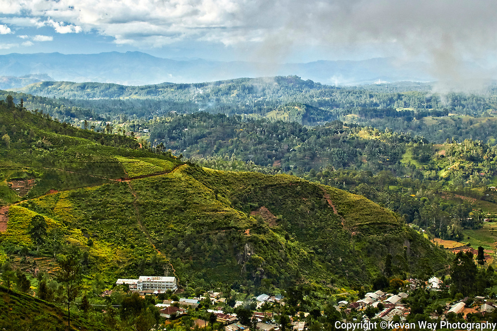 tea factory Hill Country Sri Lanka