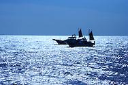 Japanese Fishing Boats, Sagami Bay