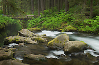 Sol Duc River, Olympic National Park